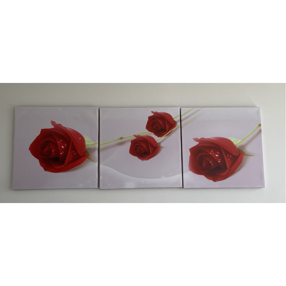Wall Art -red roses